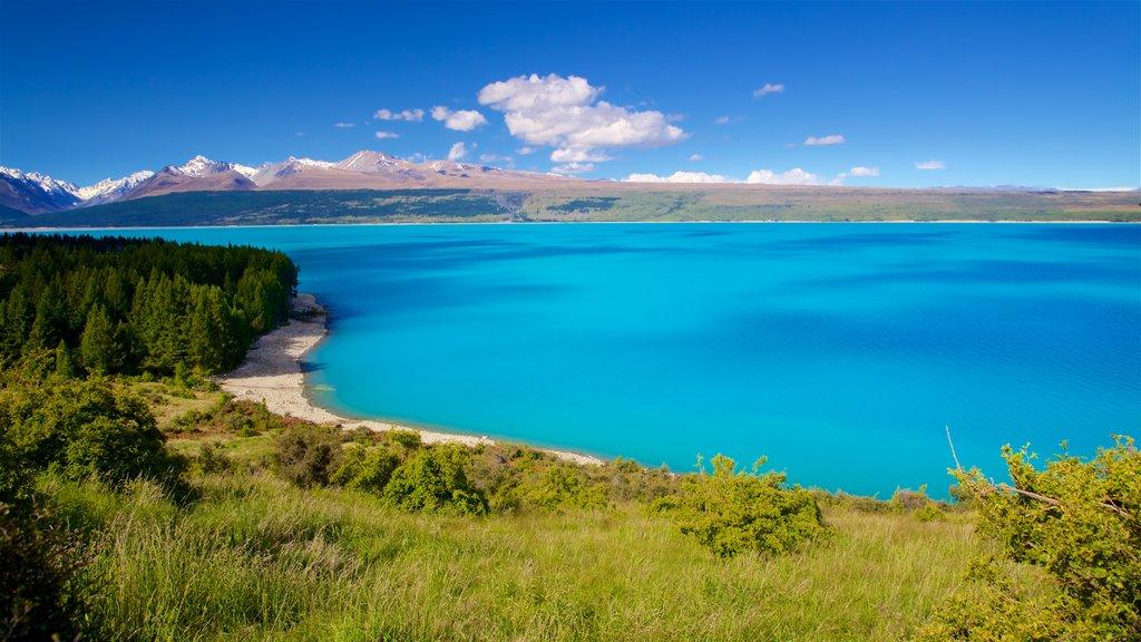 Lake Pukaki mostrando escenas tranquilas y un lago o abrevadero