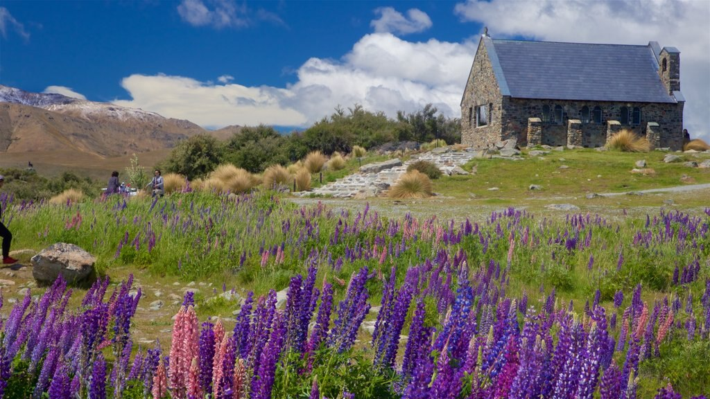 Church of the Good Shepherd which includes tranquil scenes, wildflowers and a church or cathedral