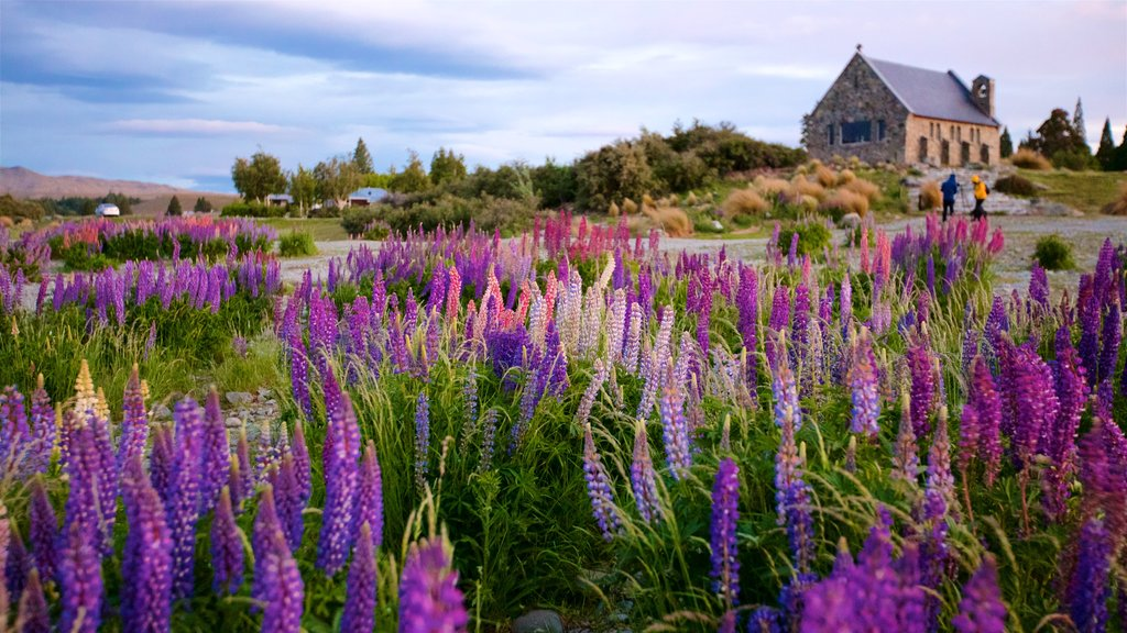 Church of the Good Shepherd featuring wildflowers and tranquil scenes