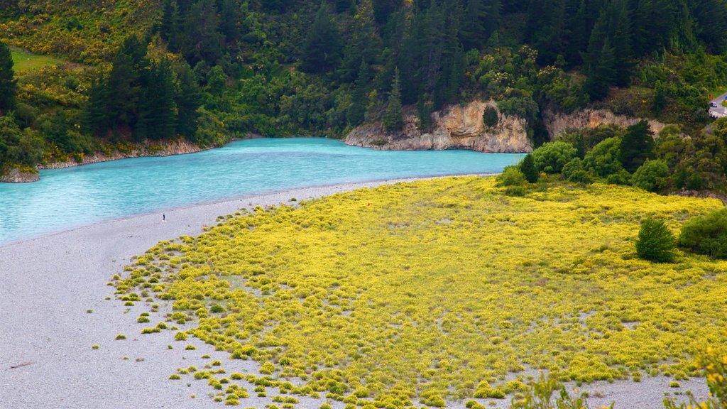 Rakaia Gorge ofreciendo un río o arroyo y escenas tranquilas