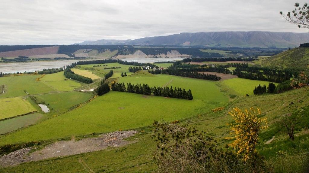 Rakaia Gorge que incluye vistas de paisajes y escenas tranquilas
