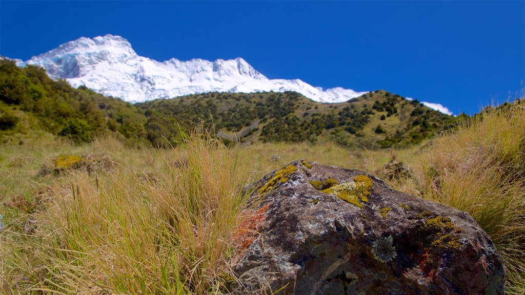 Mount Cook National Park featuring tranquil scenes, landscape views and mountains