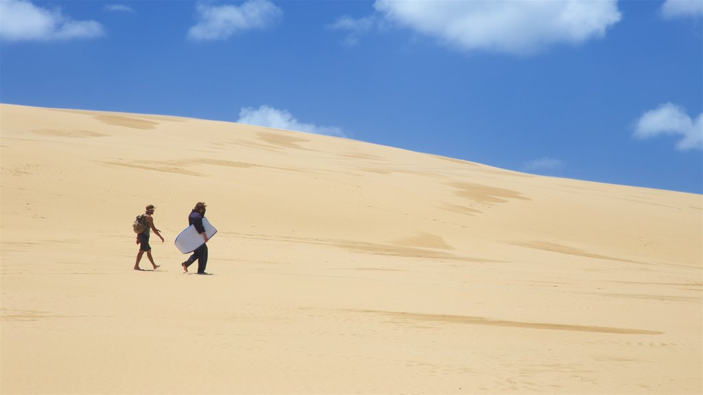 Te Paki Sand Dunes featuring desert views as well as a couple