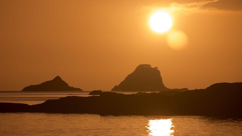 Cathedral Cove Beach mostrando costa escarpada, una puesta de sol y vistas generales de la costa