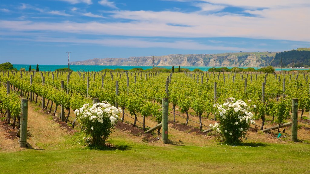 Elephant Hill Estate Winery which includes flowers and farmland