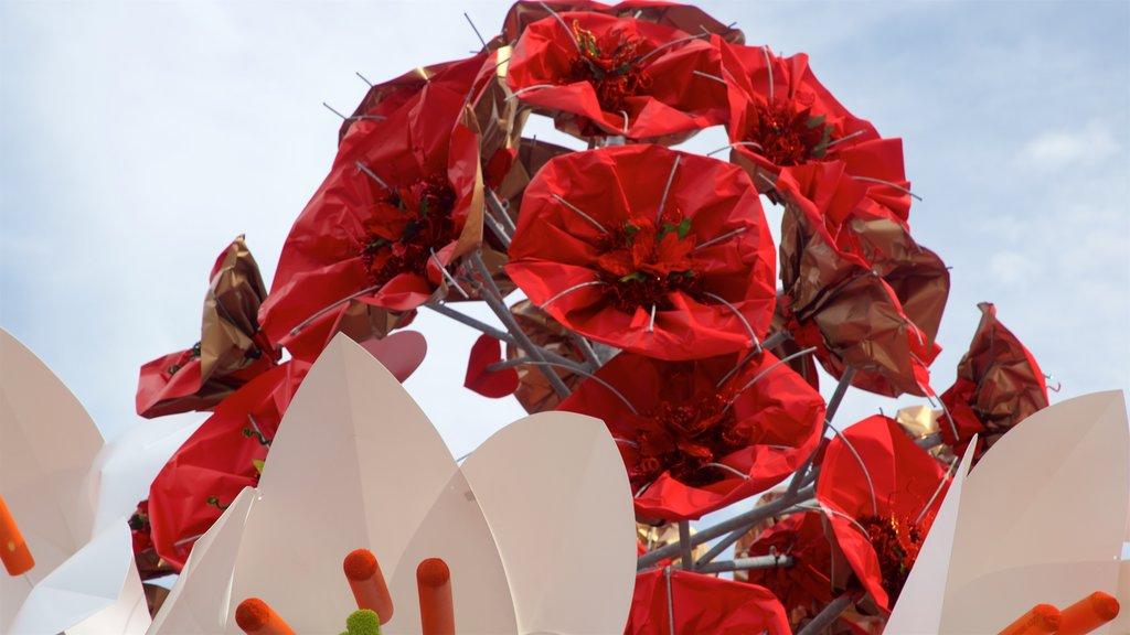 Napier mostrando arte al aire libre