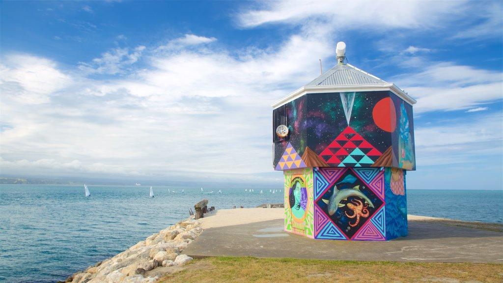 Napier ofreciendo arte al aire libre y una bahía o puerto
