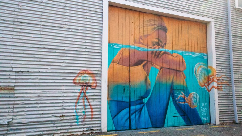 Hawke\'s Bay which includes outdoor art