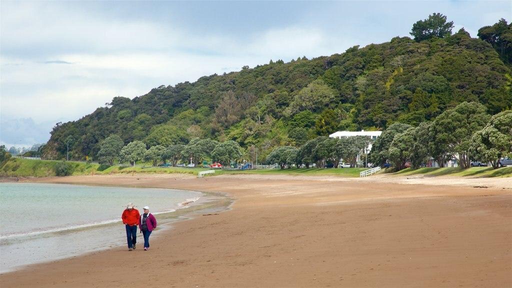 Paihia Beach which includes general coastal views and a sandy beach as well as a couple