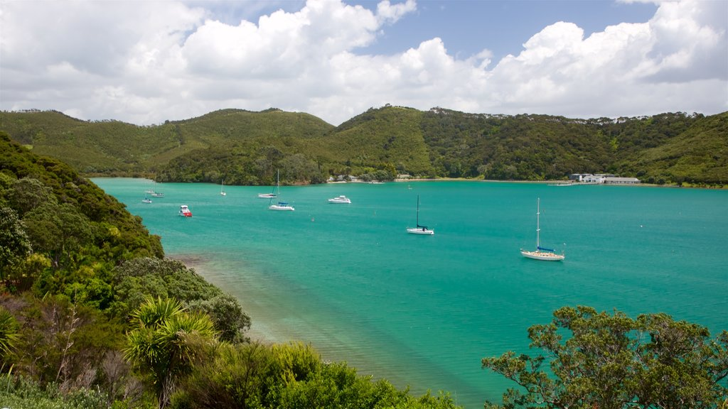Bay of Islands showing a bay or harbor and tranquil scenes