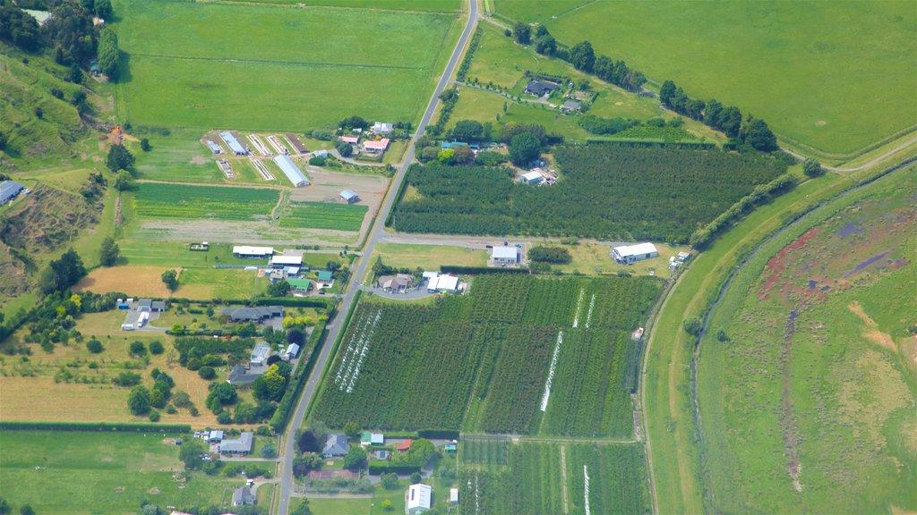 Napier which includes farmland