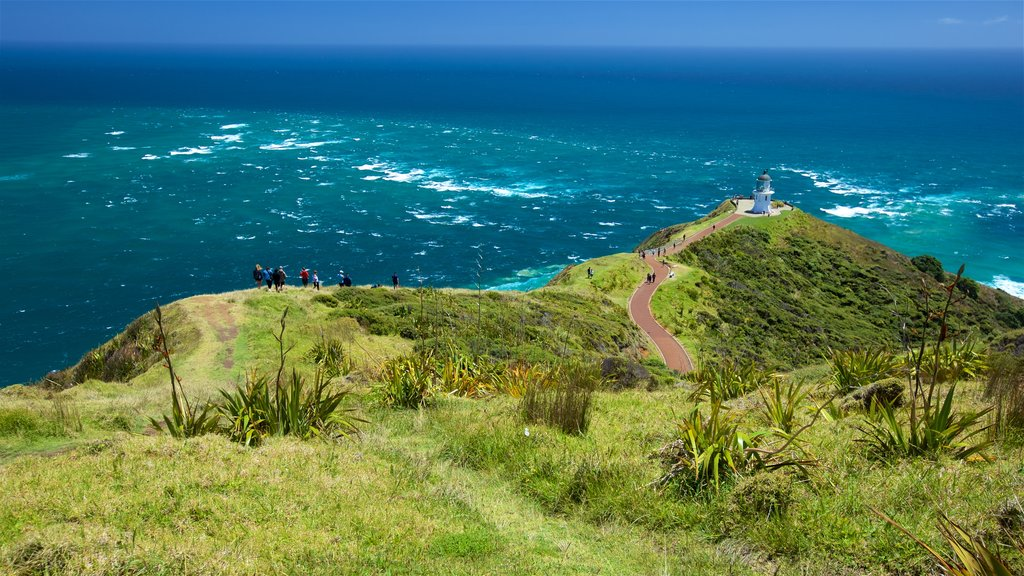 Cape Reinga featuring general coastal views, views and a lighthouse