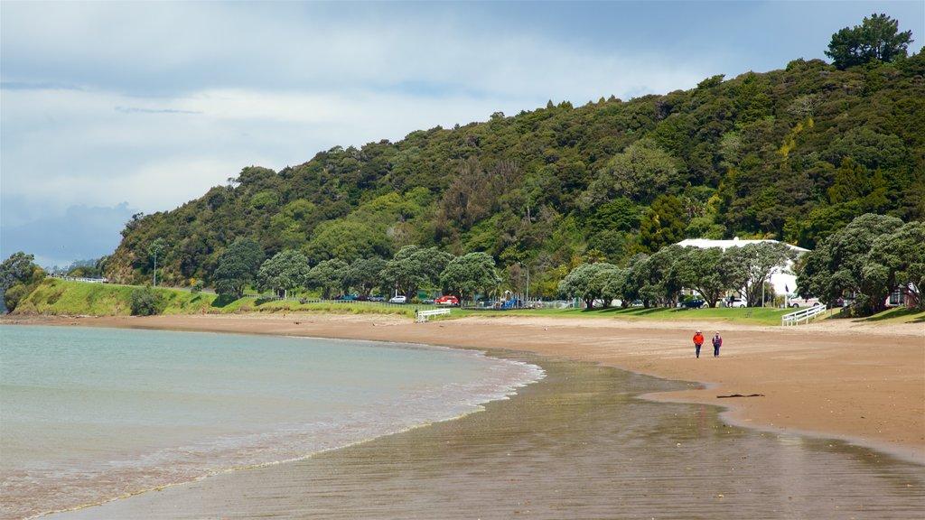 Paihia Beach showing a sandy beach and general coastal views as well as a couple