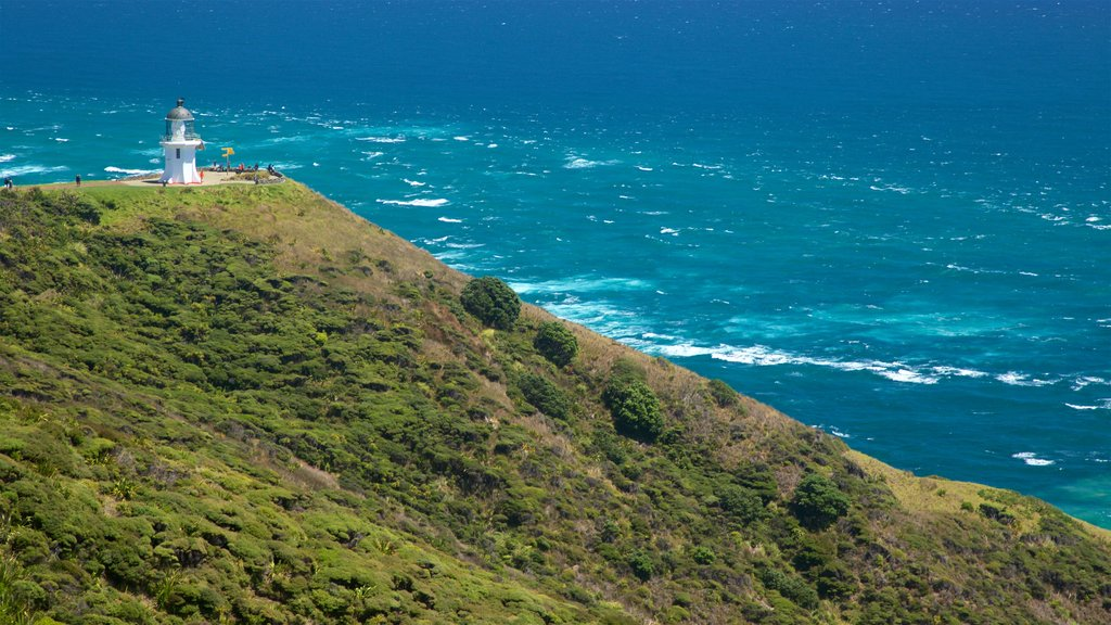 Cape Reinga Lighthouse featuring general coastal views, views and tranquil scenes