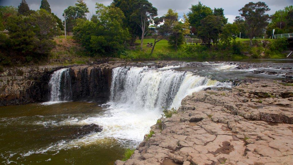 Haruru Falls featuring a river or creek and a cascade