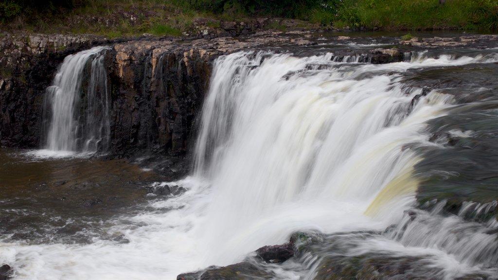 Haruru Falls which includes a river or creek and a cascade