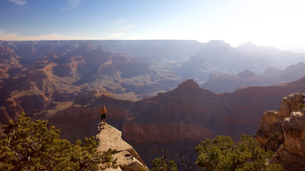 Grand Canyon featuring landscape views, tranquil scenes and a gorge or canyon