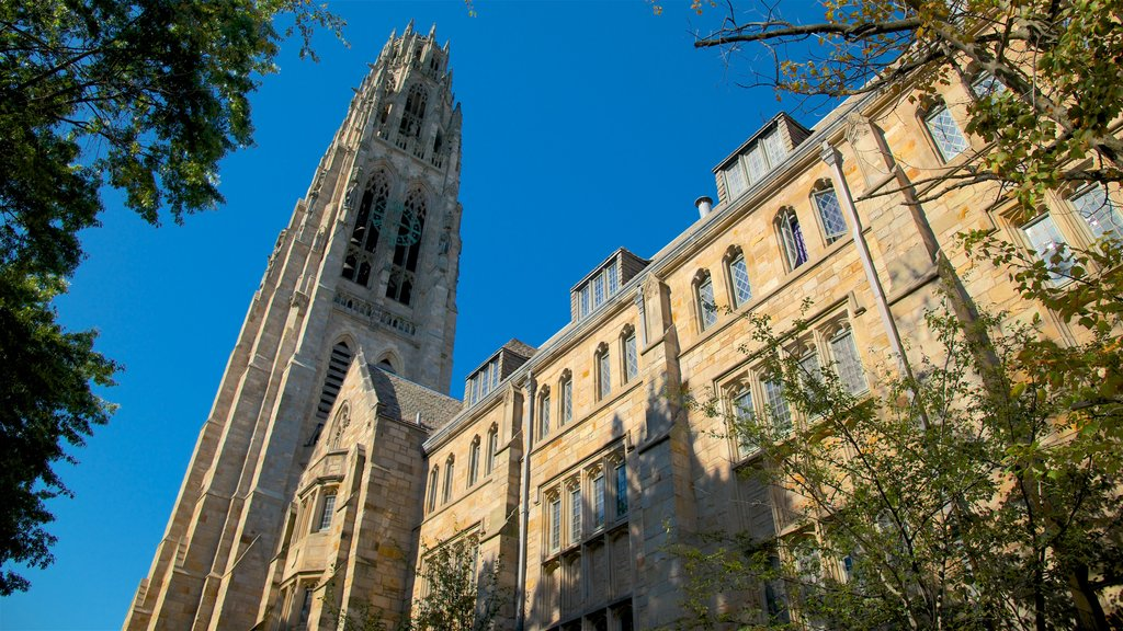 New Haven showing heritage architecture