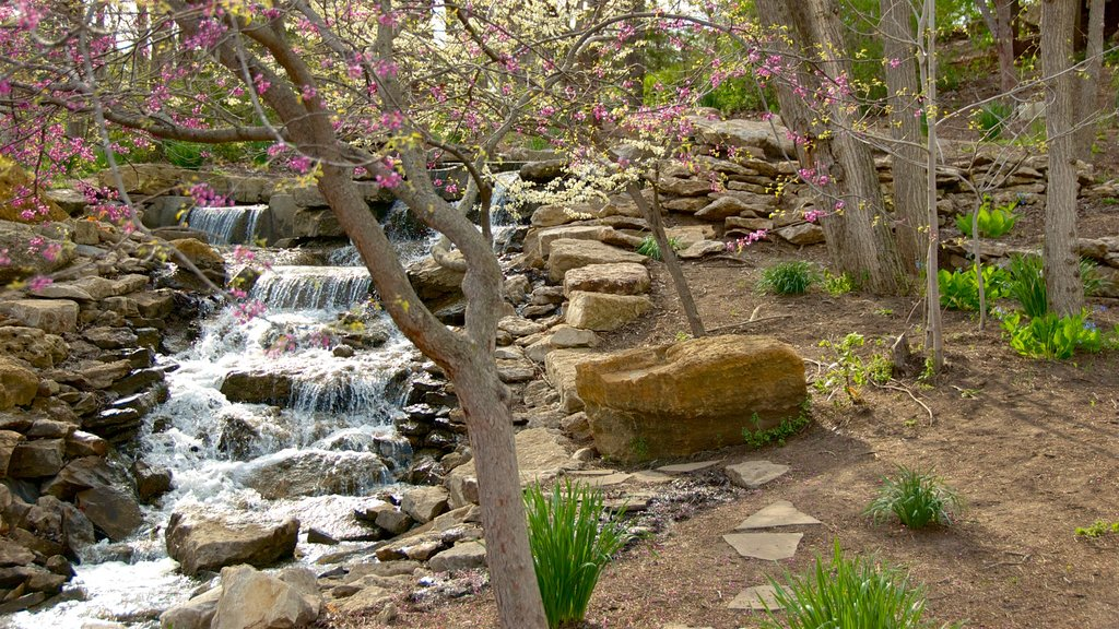 Overland Park Arboretum and Botanical Gardens which includes a river or creek and wildflowers