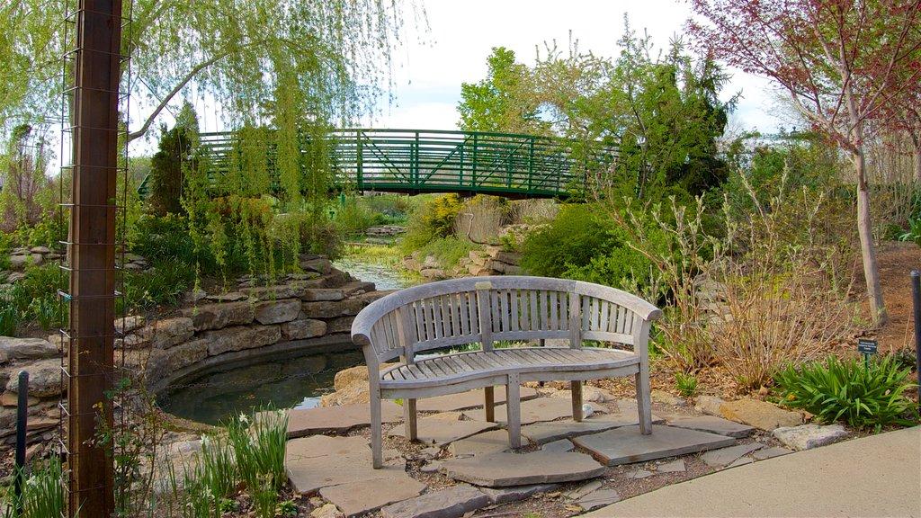 Overland Park Arboretum and Botanical Gardens ofreciendo un puente, un jardín y un río o arroyo
