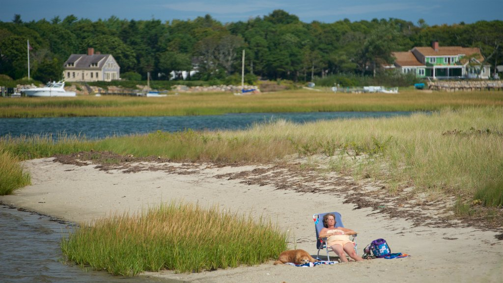 Yarmouth featuring cuddly or friendly animals and a river or creek as well as an individual femail
