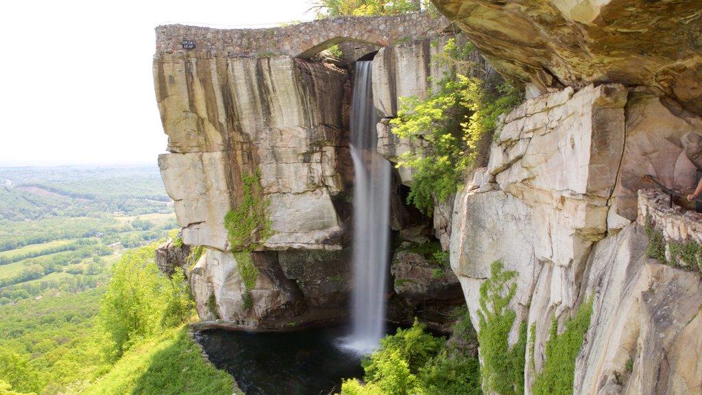 Lookout Mountain ofreciendo un barranco o cañón, escenas tranquilas y una cascada