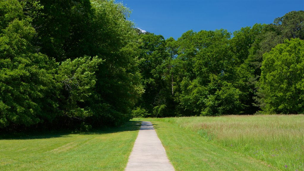 Ocmulgee National Monument which includes a park