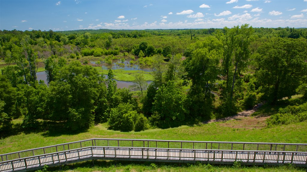 Ocmulgee National Monument showing landscape views and tranquil scenes