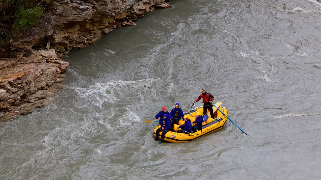 Denali featuring kayaking or canoeing and a river or creek as well as a small group of people