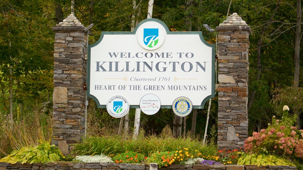 Killington which includes signage and flowers