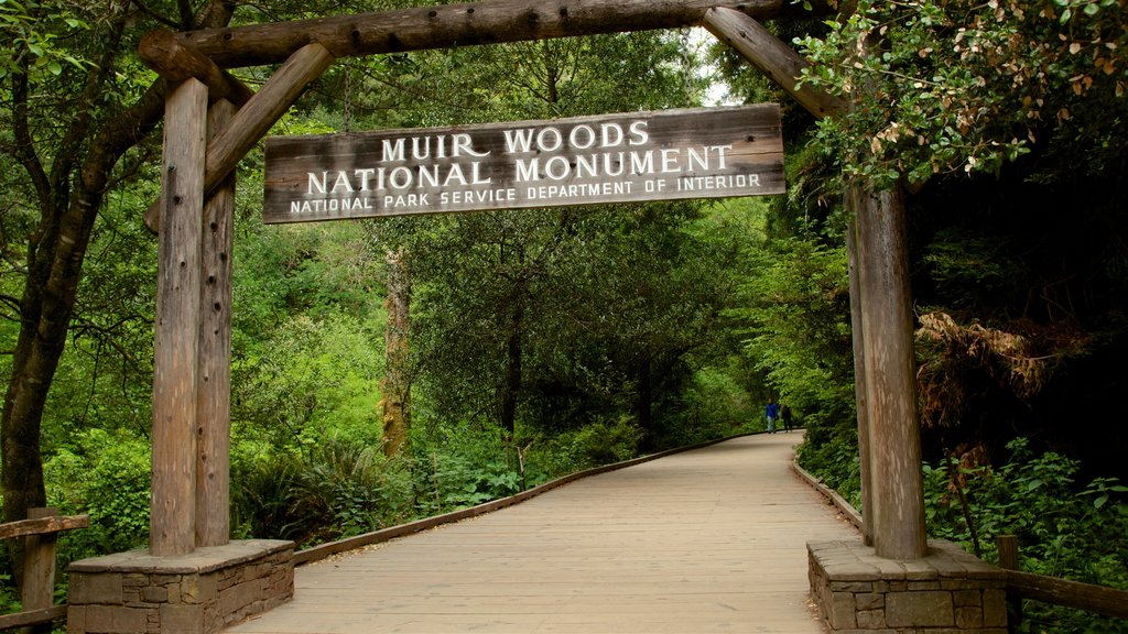 Muir Woods featuring signage and forests