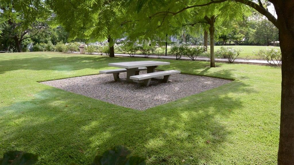 Burbank which includes a garden