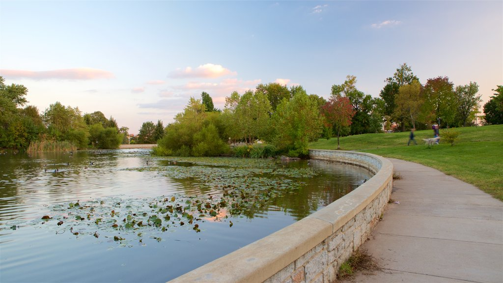 Patterson Park featuring a park, a pond and a sunset