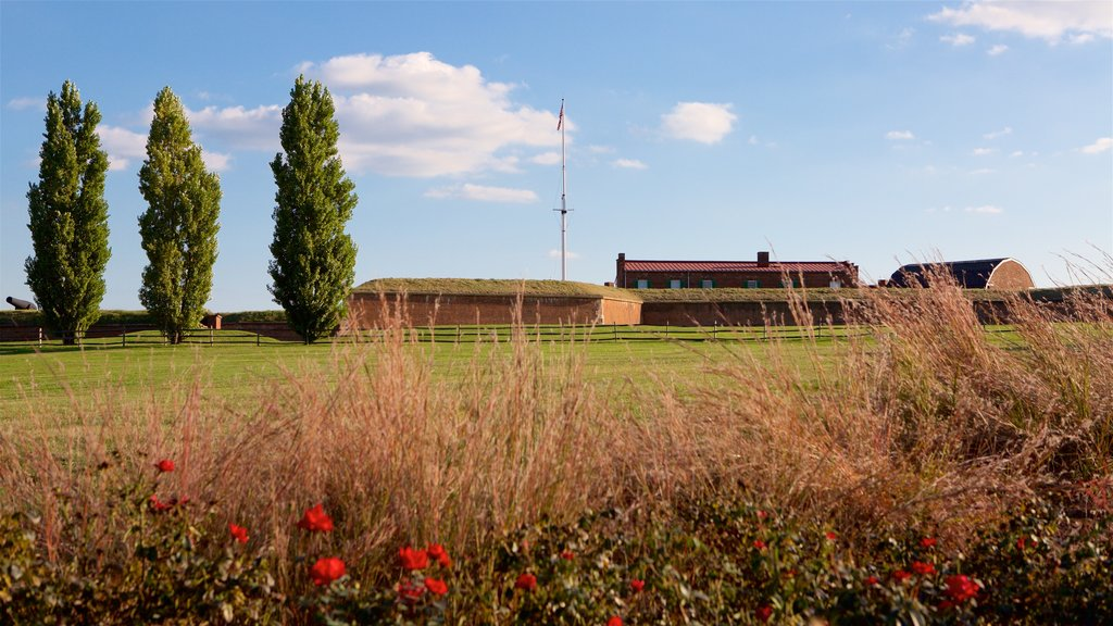 Fort McHenry showing wildflowers and a garden