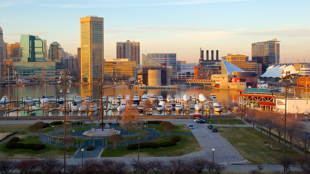 National Aquarium in Baltimore showing a city, a bay or harbor and a garden