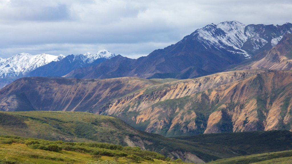 Denali National Park featuring mountains, tranquil scenes and landscape views