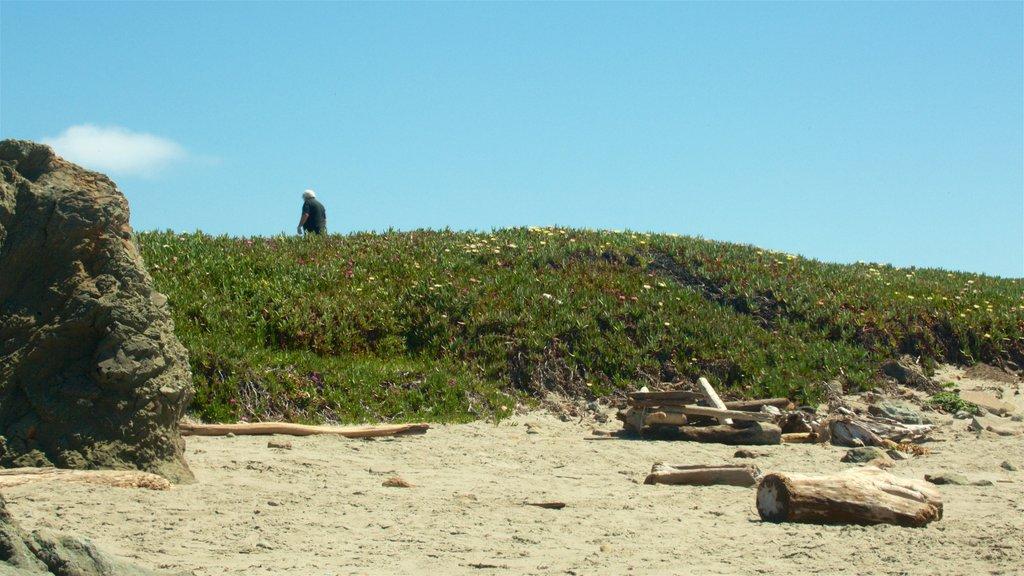 Glass Beach featuring general coastal views and a sandy beach