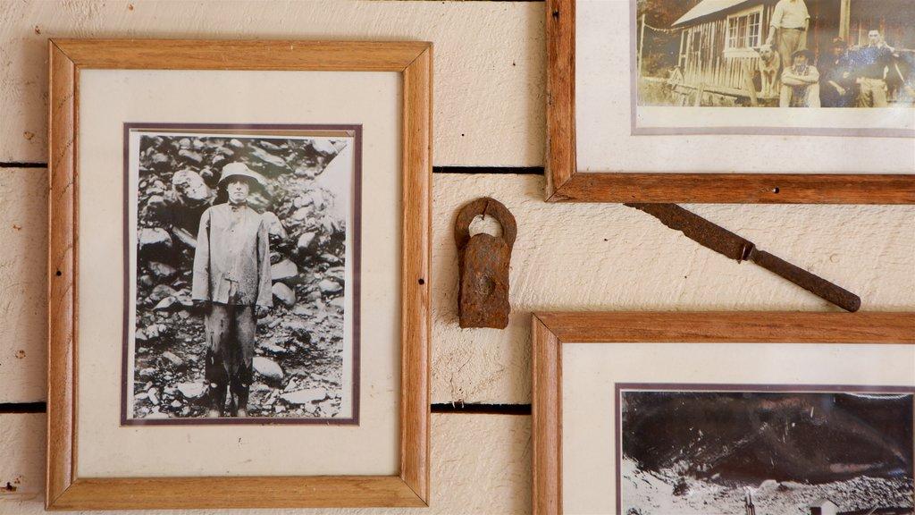 Alyeska Ski Resort showing heritage elements