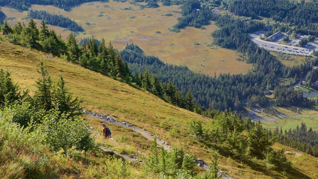Alyeska Ski Resort showing tranquil scenes and landscape views