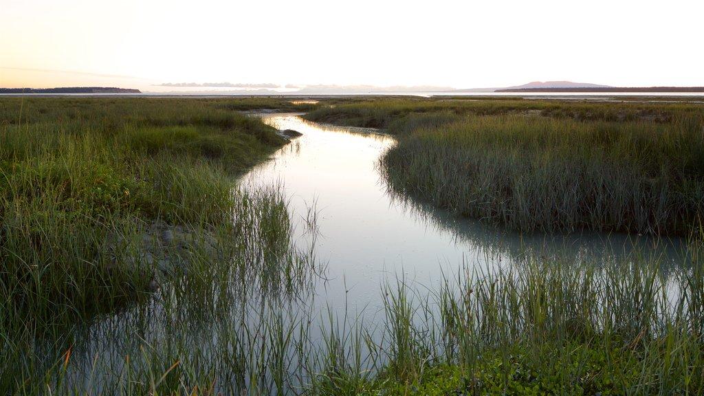Ruta costera Tony Knowles mostrando vistas de paisajes y humedales
