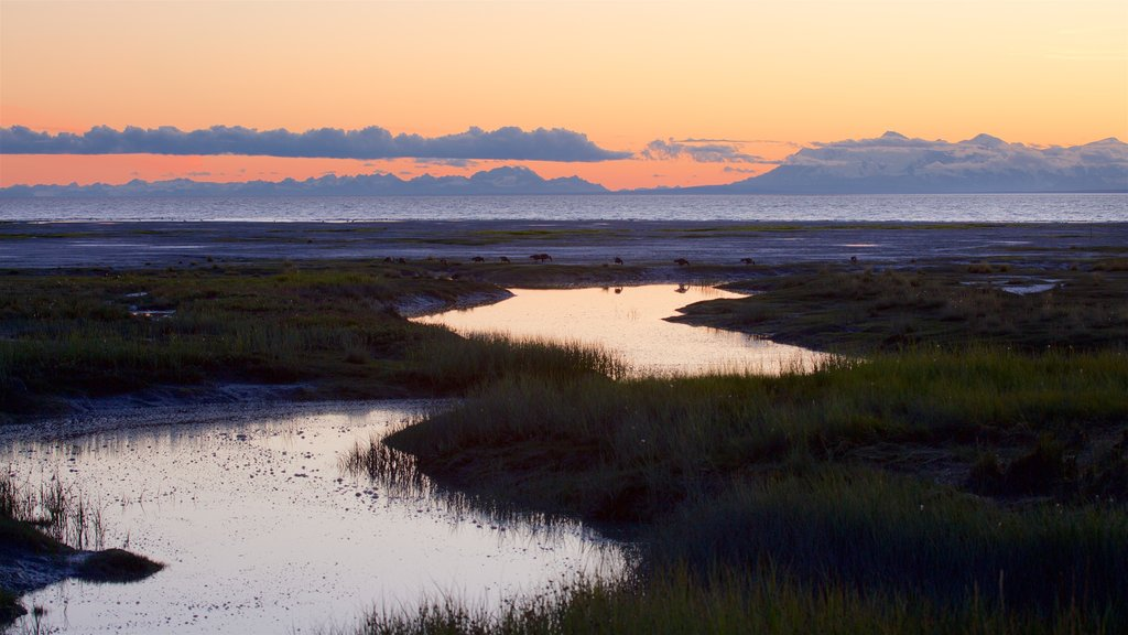Tony Knowles Coastal Trail showing wetlands, landscape views and a sunset