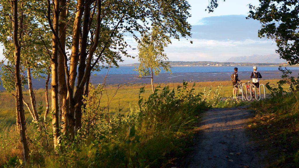 Tony Knowles Coastal Trail featuring tranquil scenes and a sunset as well as a couple