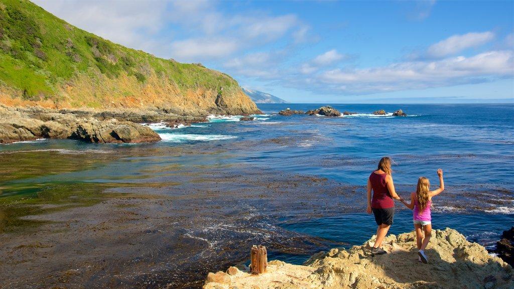 Cala Partington mostrando vistas generales de la costa y costa escarpada y también una familia