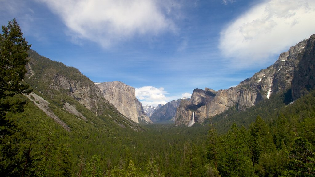 Tunnel View featuring a gorge or canyon and tranquil scenes
