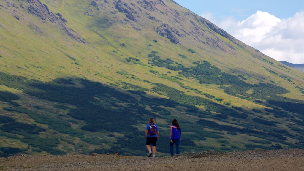 Flattop Trail featuring tranquil scenes and hiking or walking as well as a couple