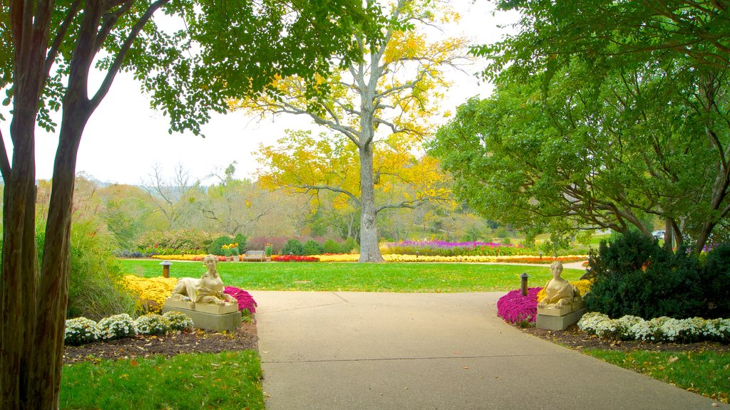 Cheekwood Botanical Gardens and Museum of Art showing a garden and landscape views