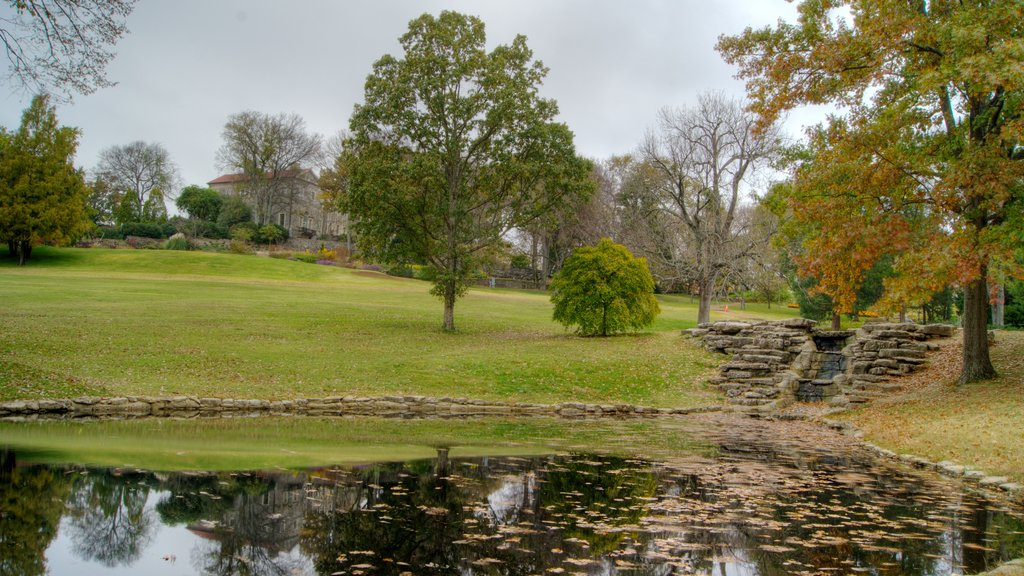 Cheekwood Botanical Gardens and Museum of Art showing a pond, autumn leaves and landscape views