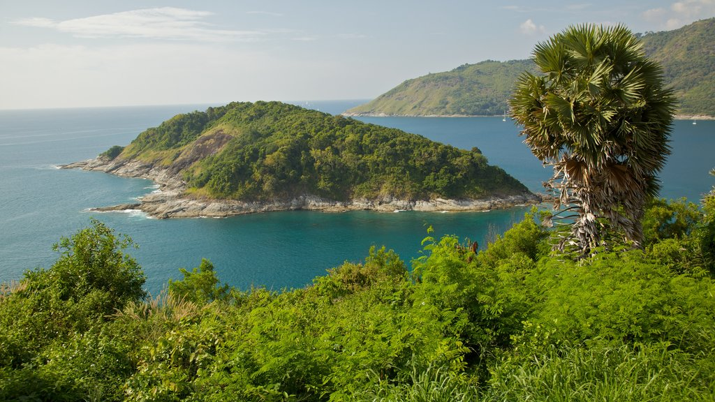 Nai Harn Beach featuring landscape views, tropical scenes and general coastal views