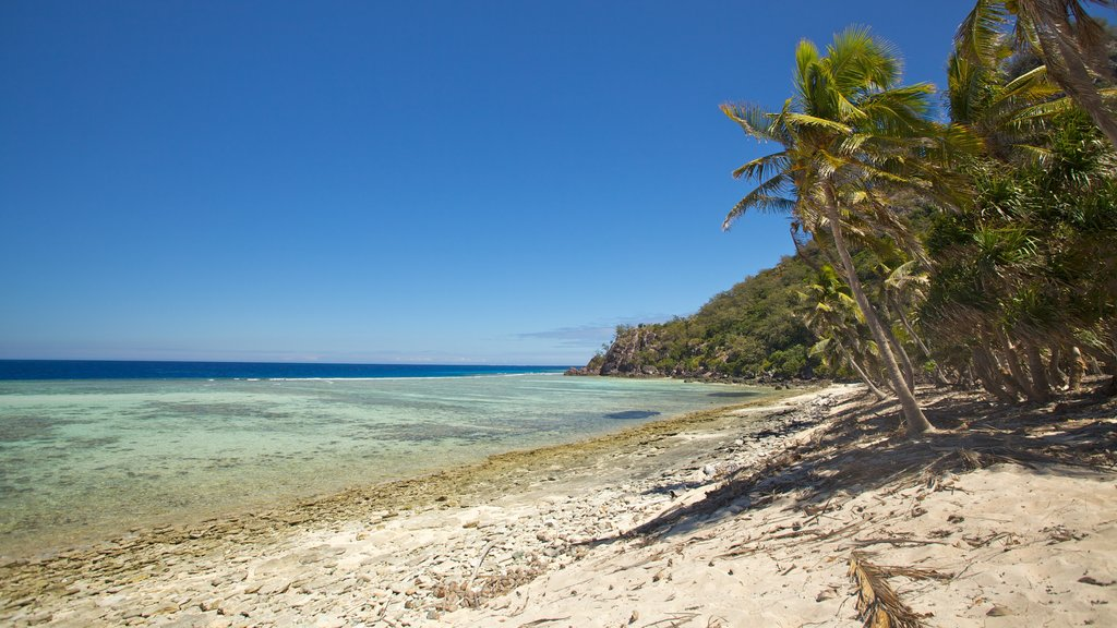 Mamanuca Islands featuring tropical scenes and a beach