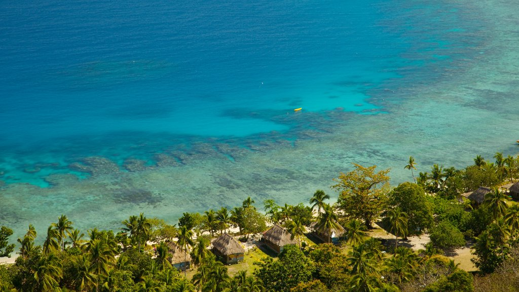 Fiji featuring tropical scenes, general coastal views and a coastal town